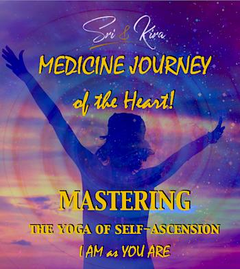 Medicine Journey Homepage 35x400